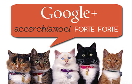 google plus accerchiamoci banner
